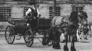 ハーネマン時代の馬車